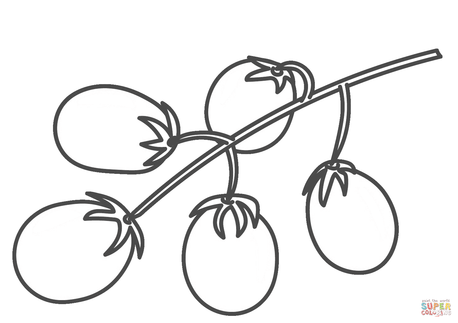 Cherry Tomato Coloring Page