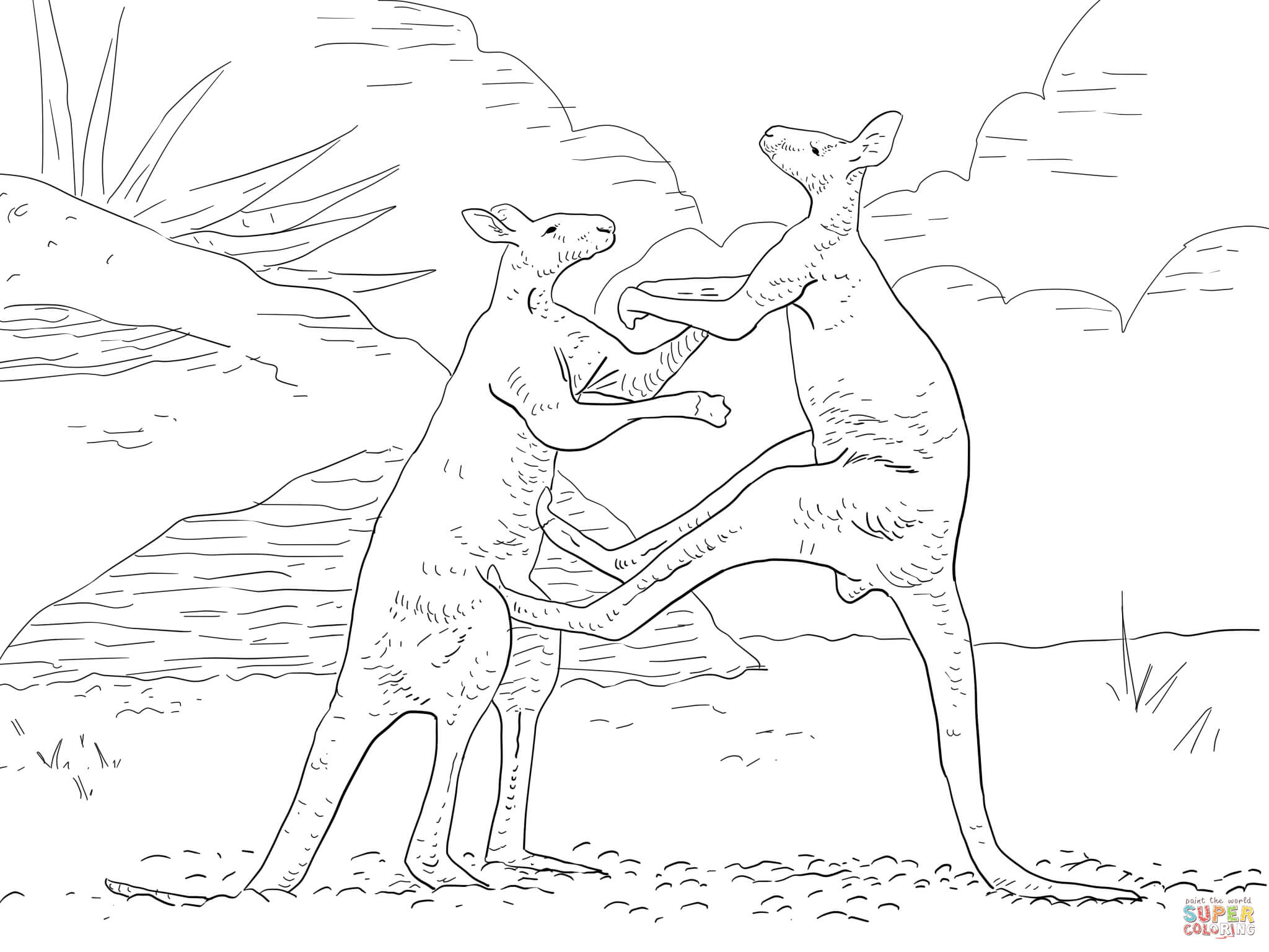 Fighting Red Kangaroos Coloring Page