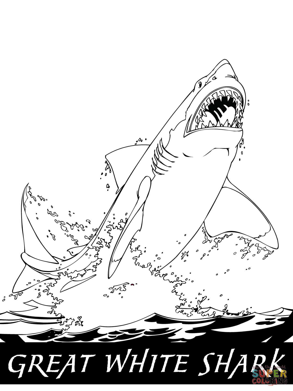 Ausmalbild Wei Er Hai Springt Aus Dem Wasser