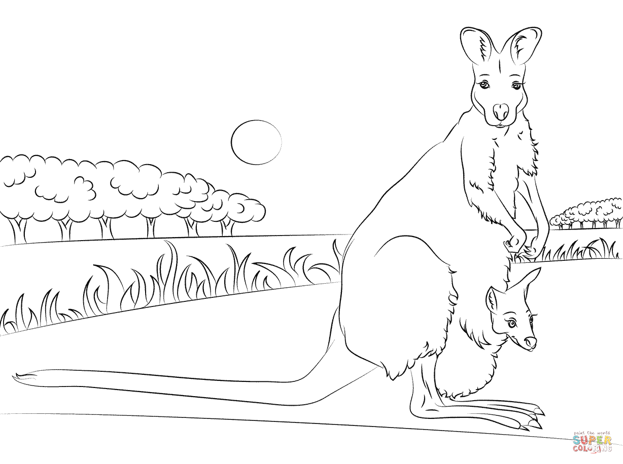 Red Necked Wallaby With Baby Coloring Page