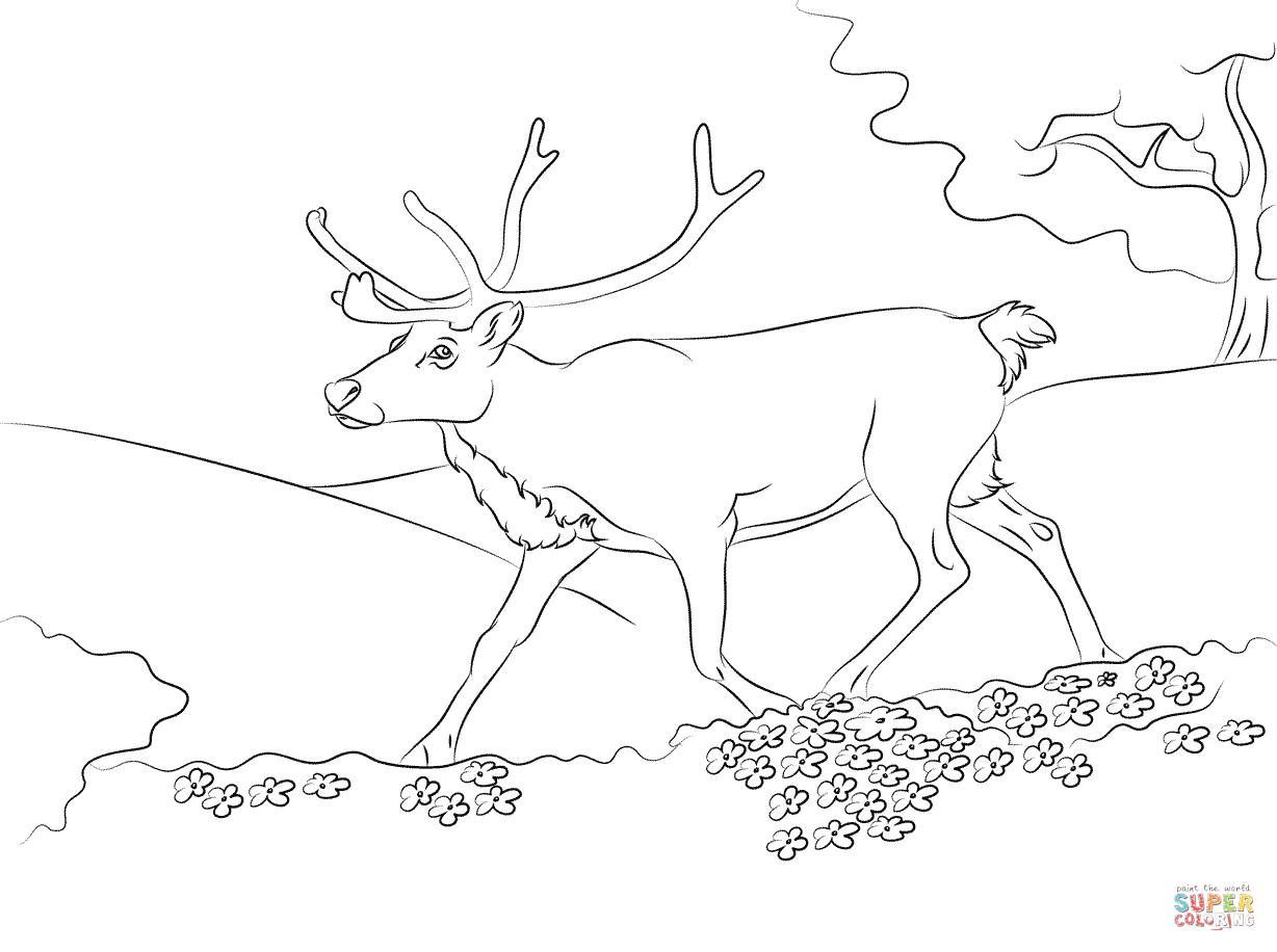 Running Reindeer Coloring Page