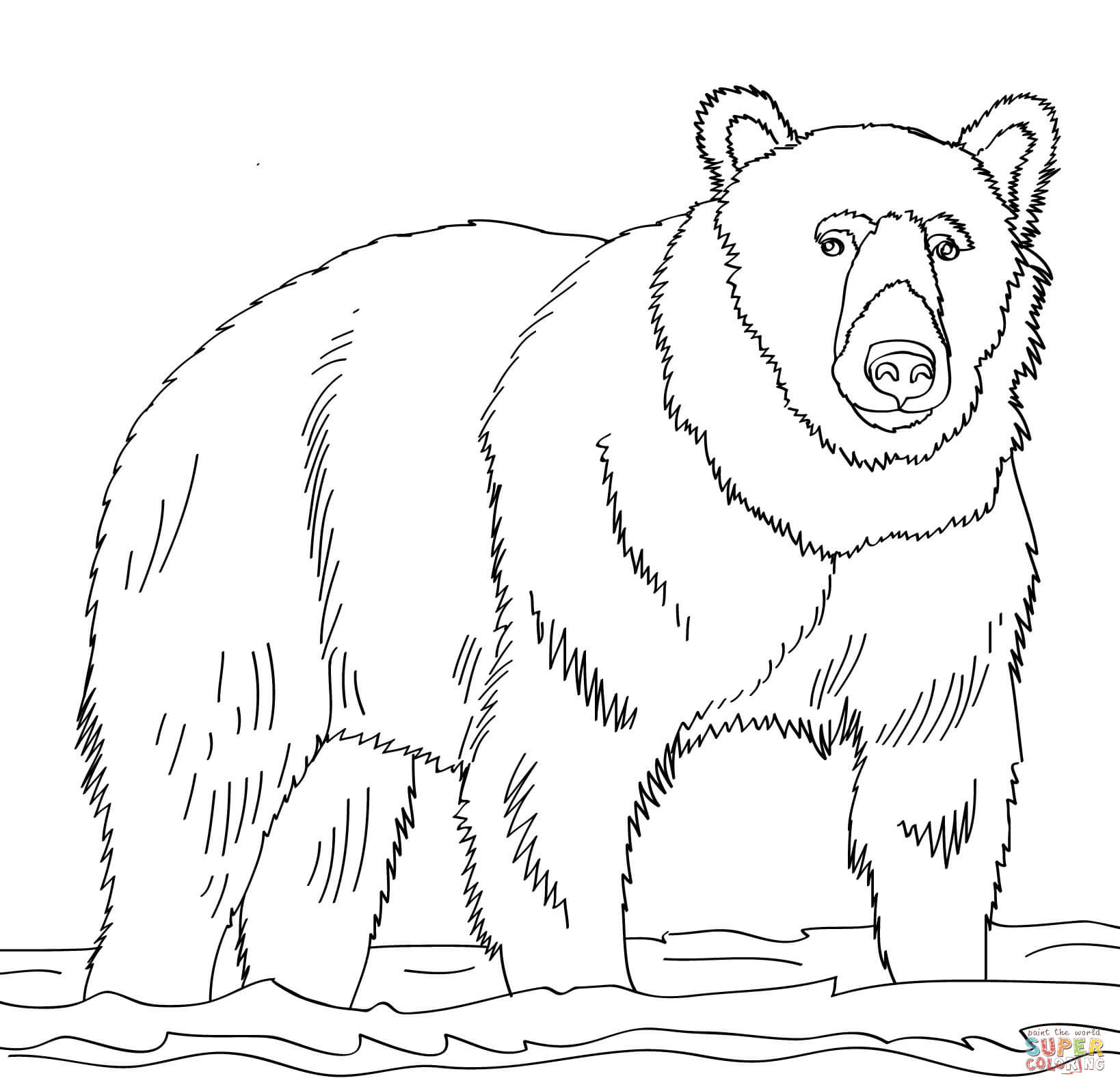 Brown Bear Stands In Shallow Water Coloring Page
