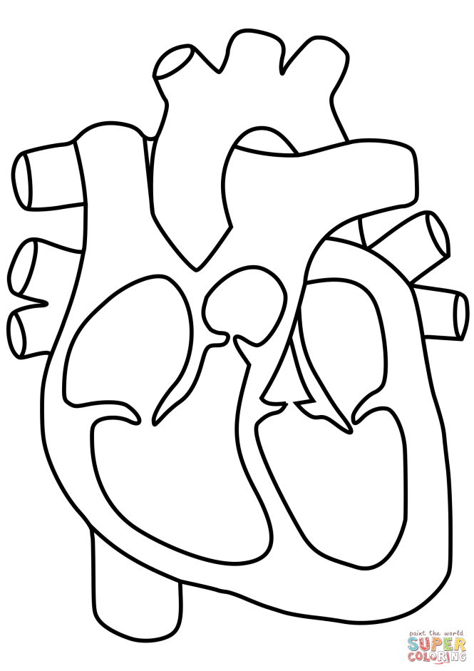 awesome human heart coloring pages photos style and ideas - Human Heart Coloring Pages
