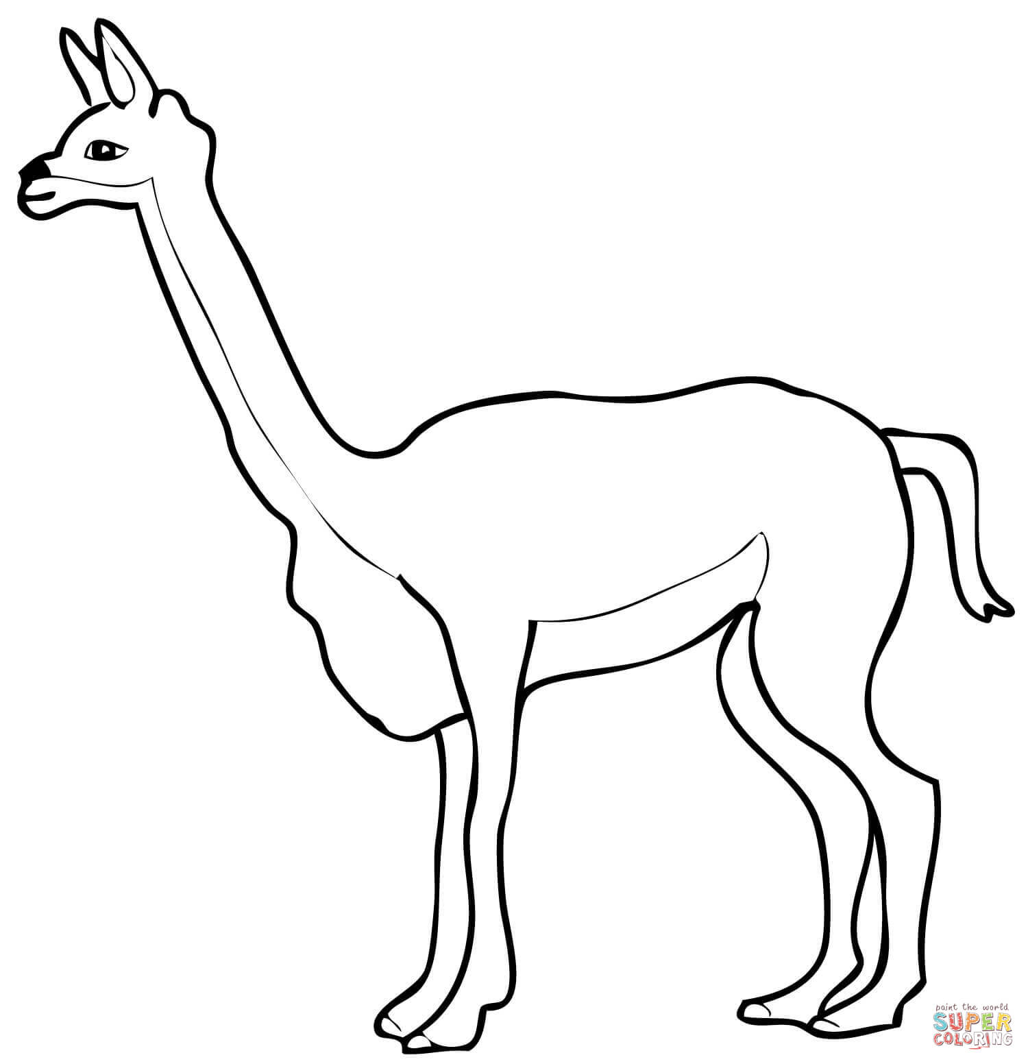 Vicuna Coloring Page