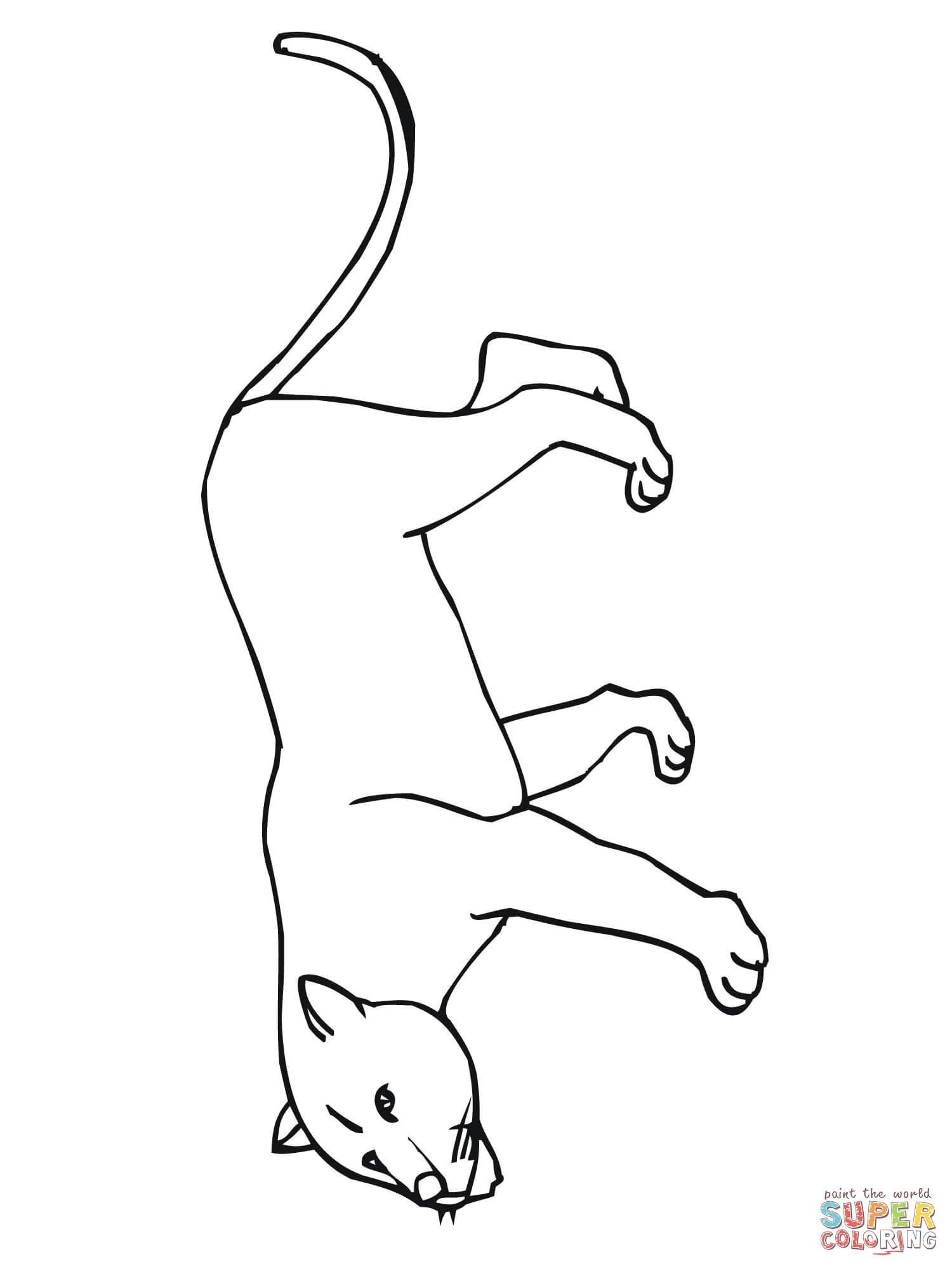 Cougar Of Poema Of Panter Of Bergleeuw Kleurplaat Gratis