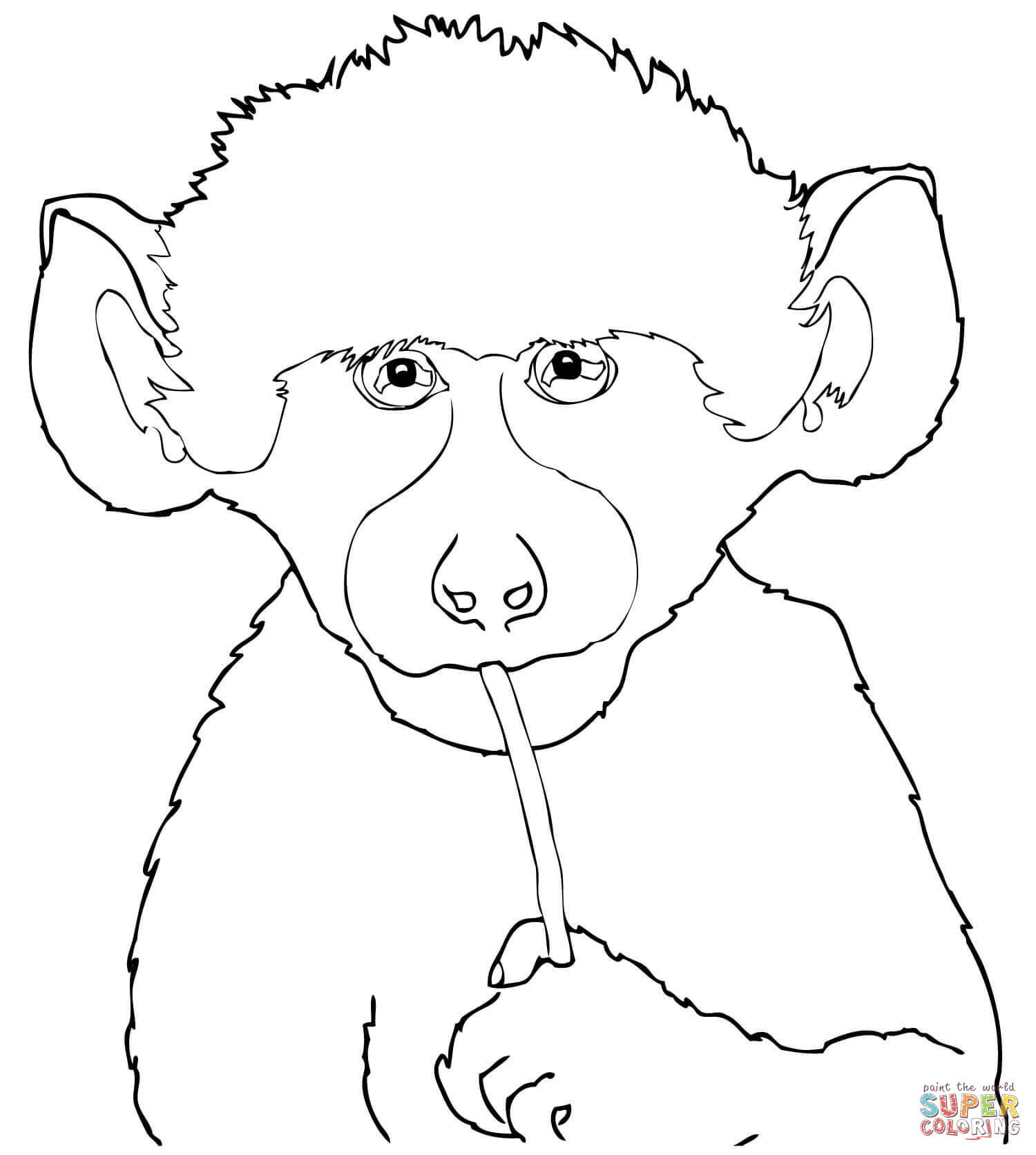 Cute Baby Baboon Coloring Page