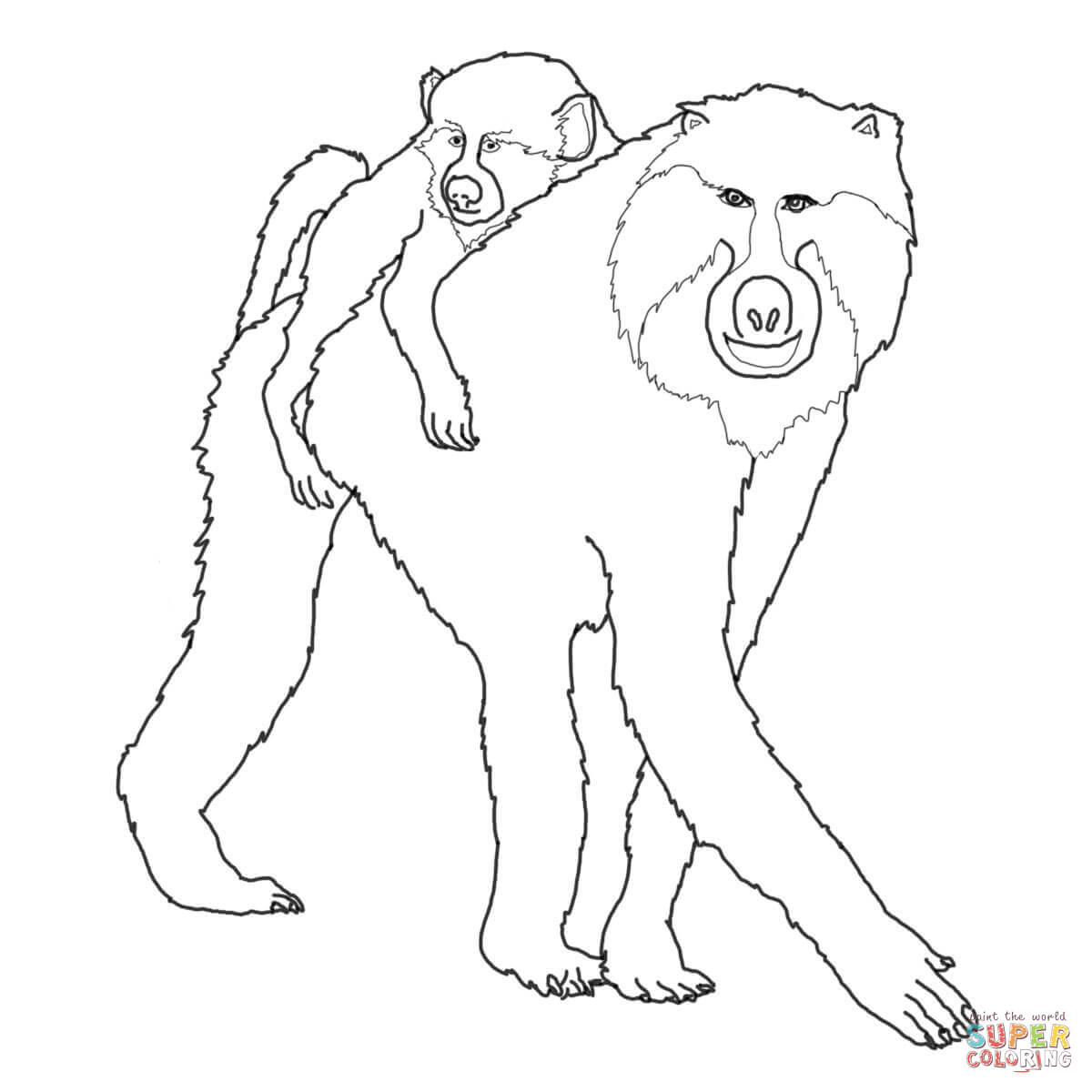 Baboon Drawing