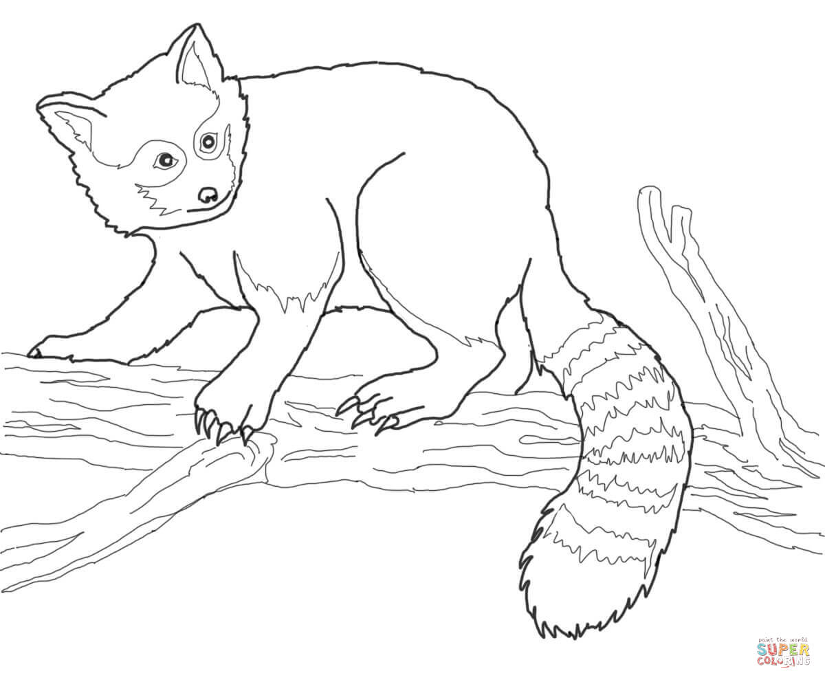 Red Panda On Tree Coloring Page