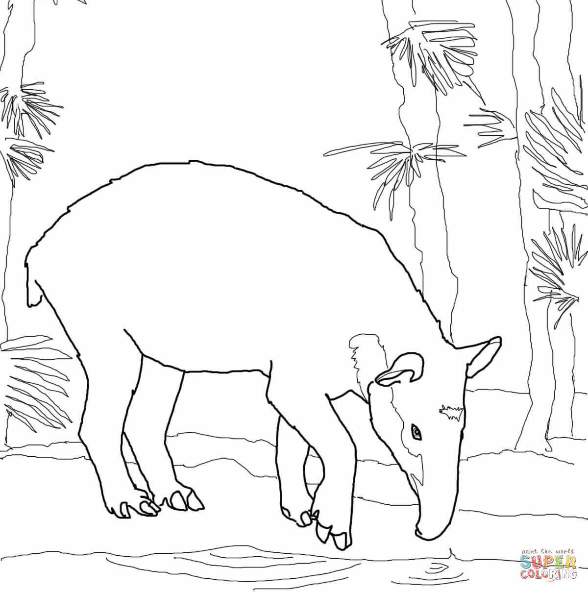 Animals Of Brazil Coloring Picture Coloring Pages