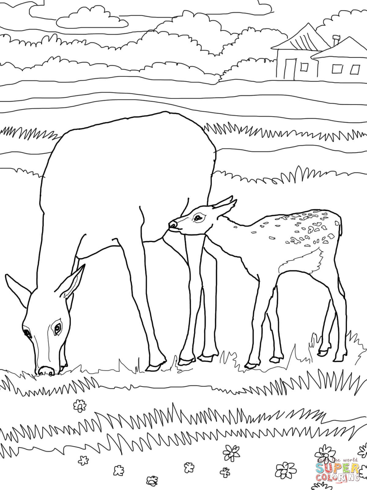 Mother And Baby Elk Coloring Page
