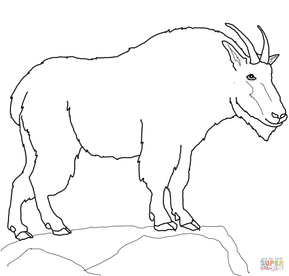 Mountain Goat Coloring Page