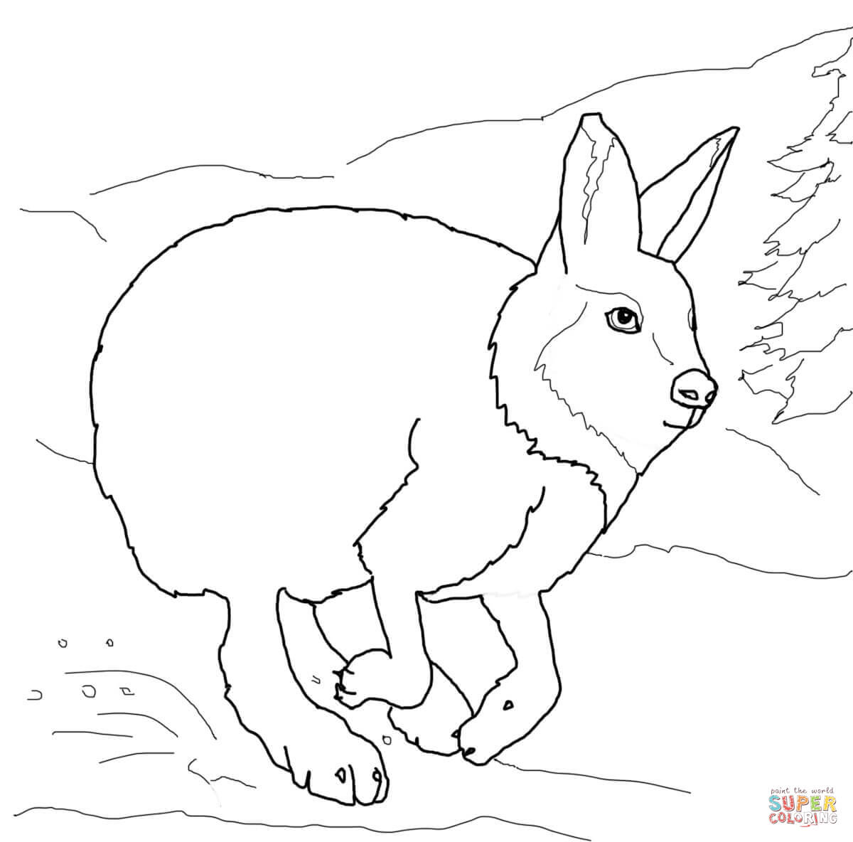 Running Arctic Hare Coloring Page
