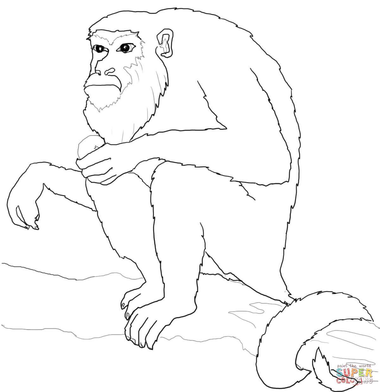 Dibujo De Mono Aullador Sentado Sobre El Arbol Para
