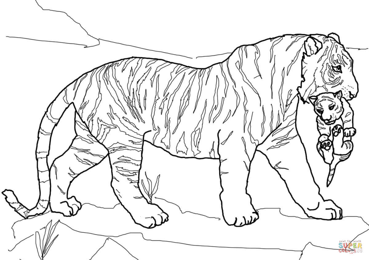 Mother Tiger Carrying Cub Coloring Page