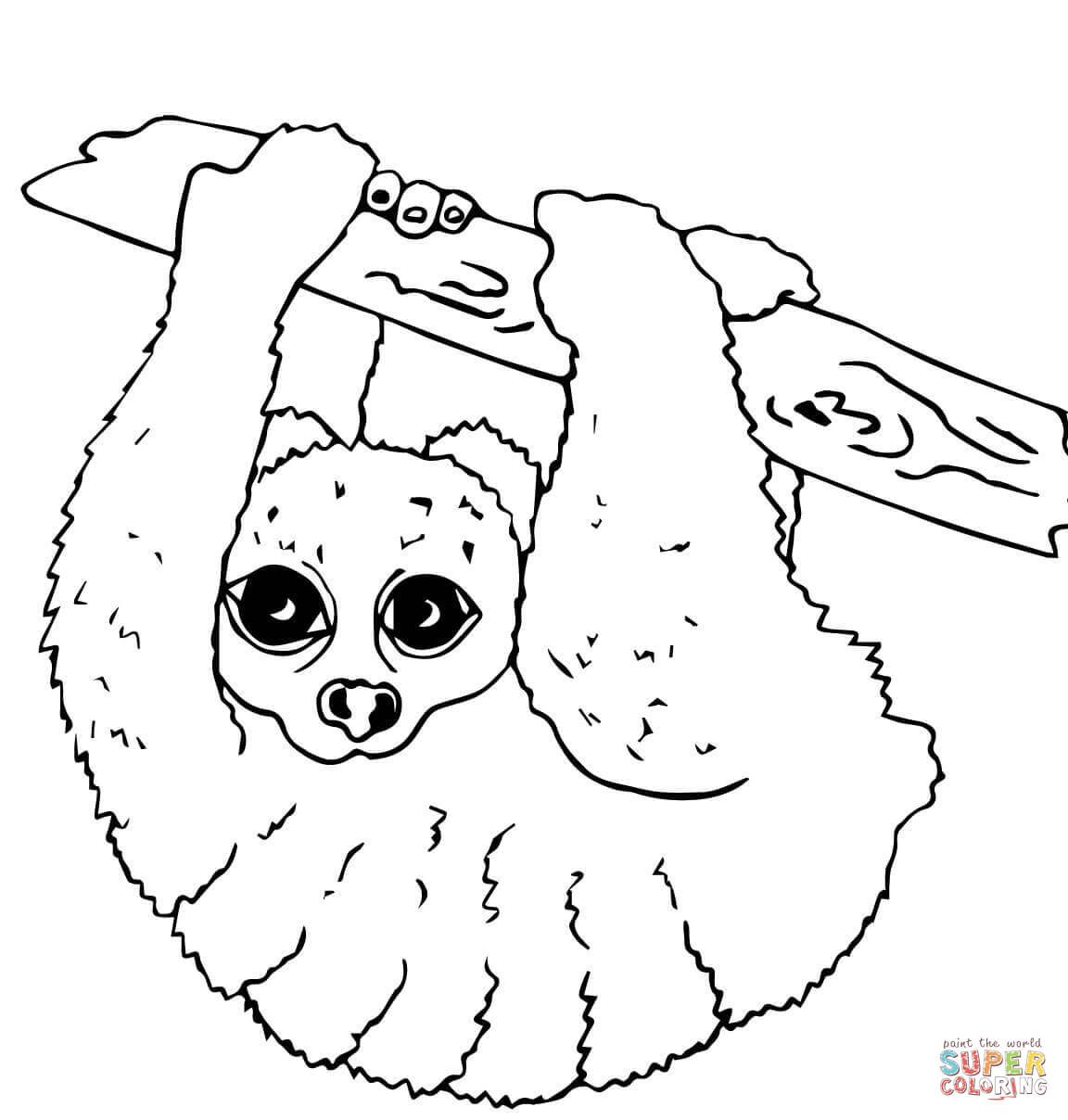 Slow Loris Coloring Page