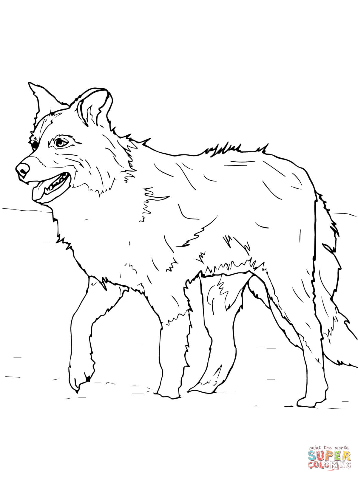 Scotch Sheep Dog Or Border Collie Coloring Page