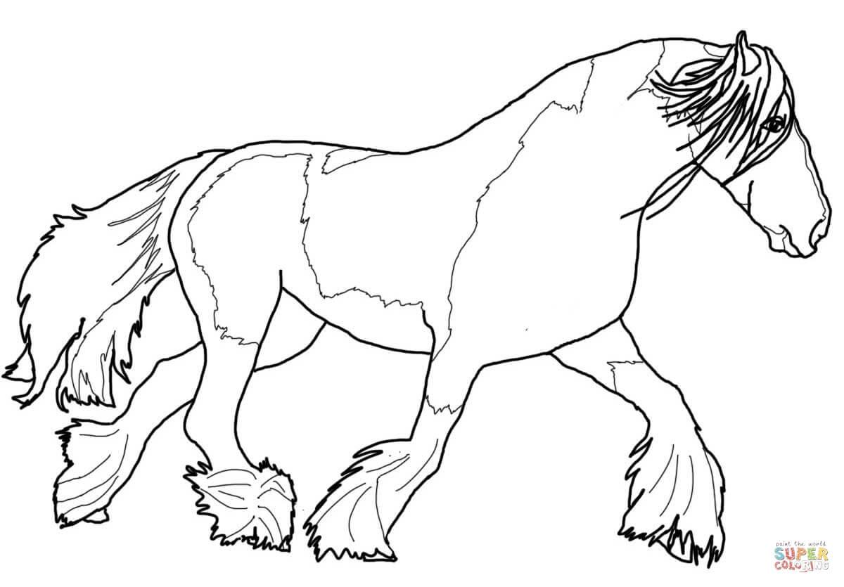 Zigeunerpaard Kleurplaat