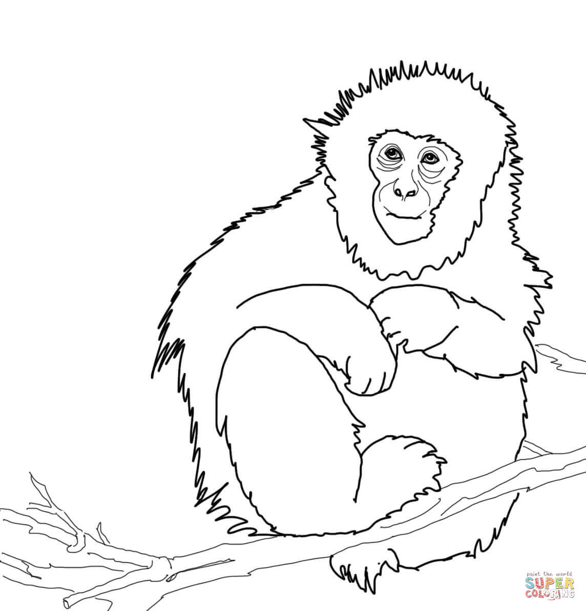 Japanese Macaque Or Snow Monkey Coloring Page Free Printable