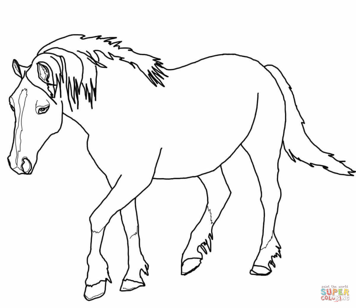 Palomino Welsh Horse Coloring Page