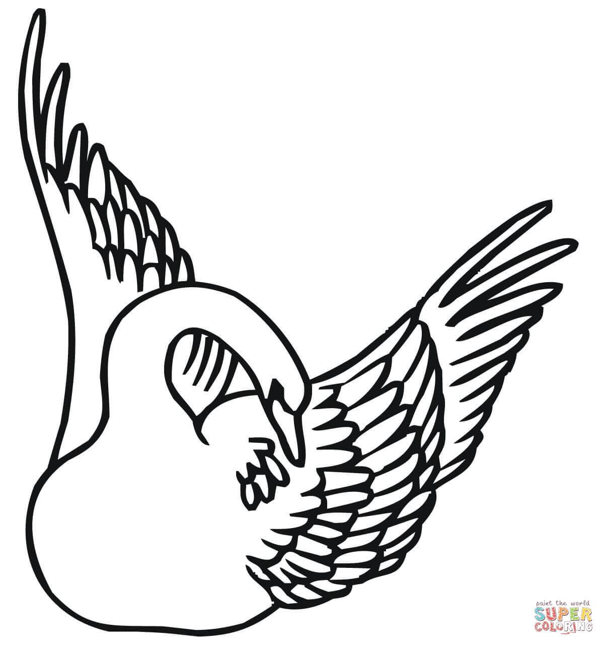 Dibujo De Cisne Nadando Con Las Alas Arriba Para Colorear