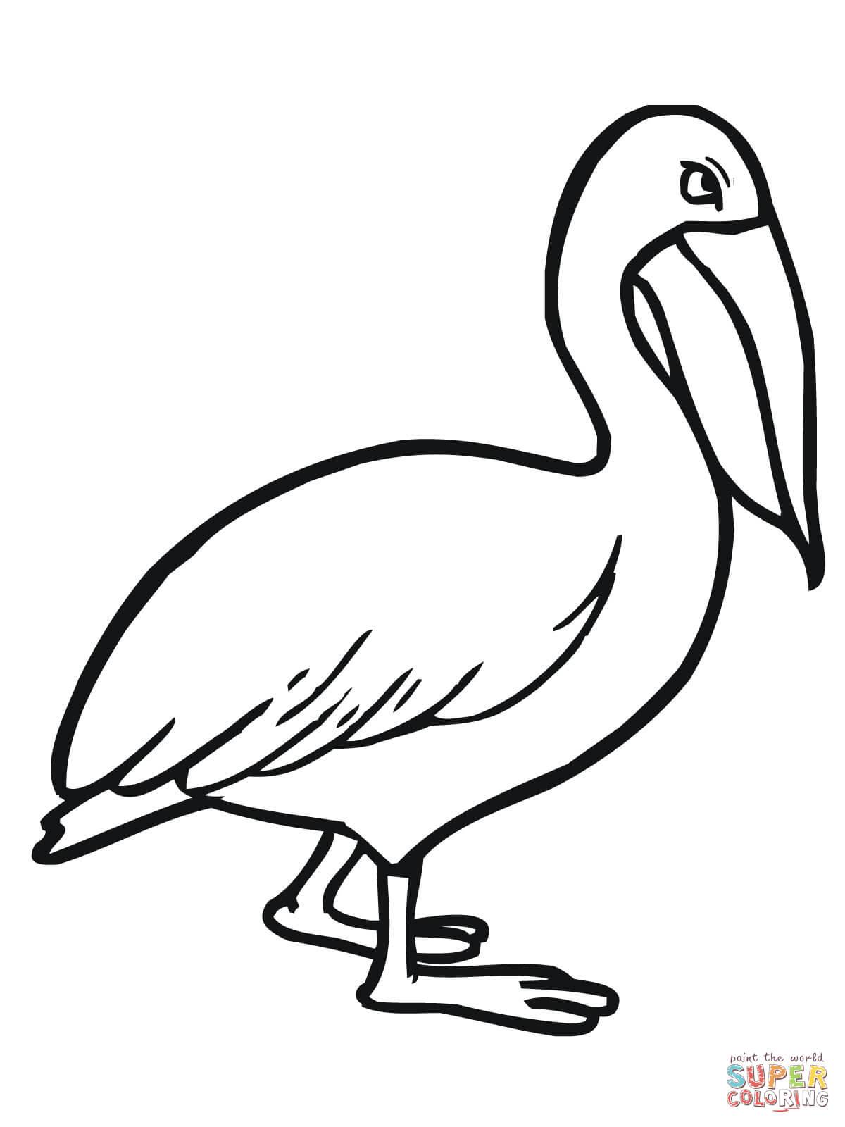 Walking Pelican Coloring Page