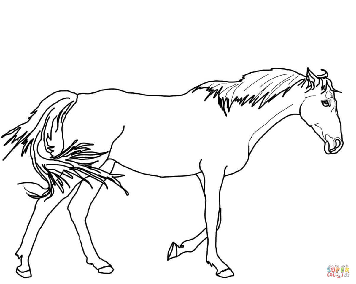 thoroughbred coloring pages - draw the line thoroughbred
