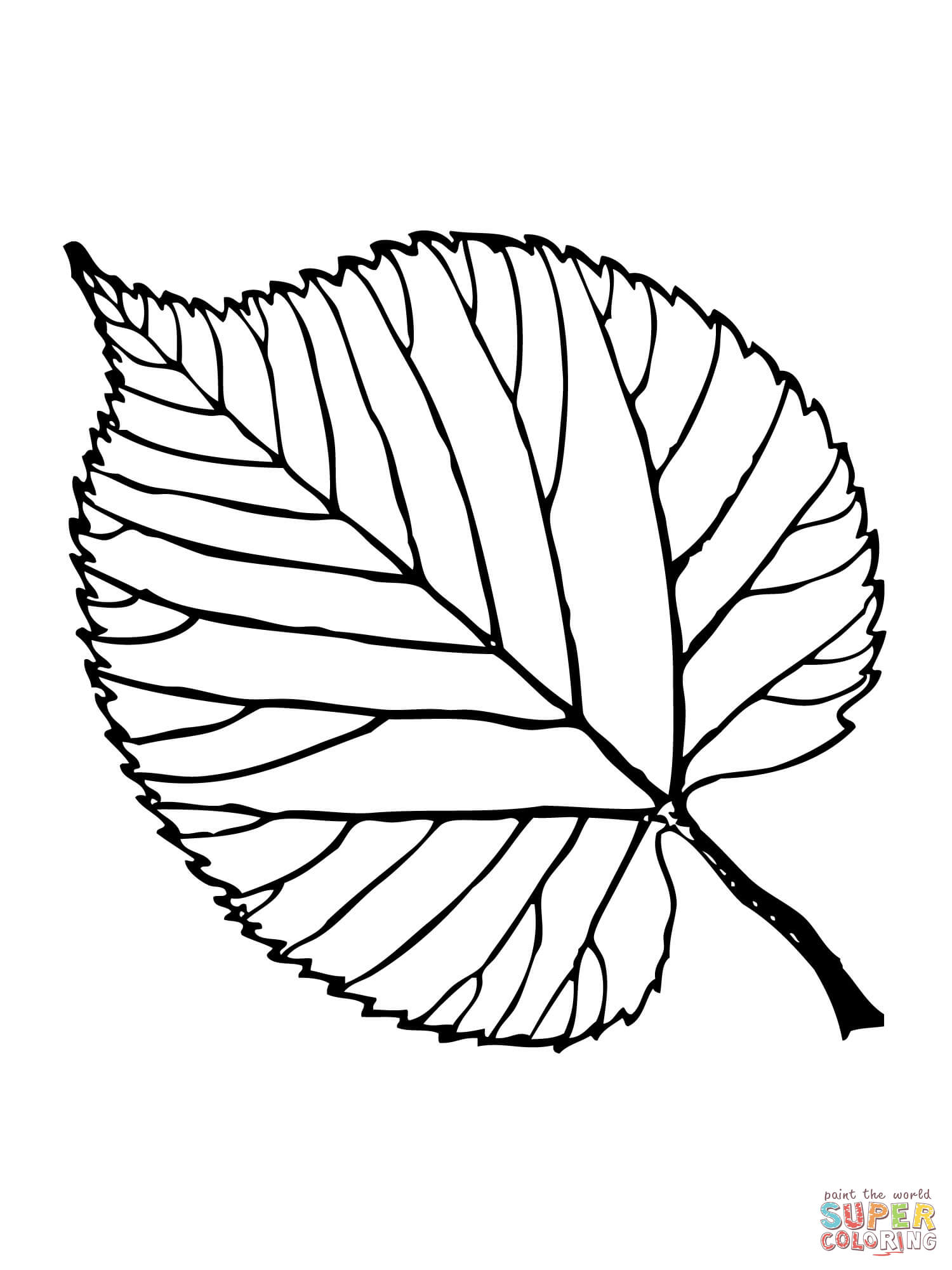 Basswood Leaf Coloring Page