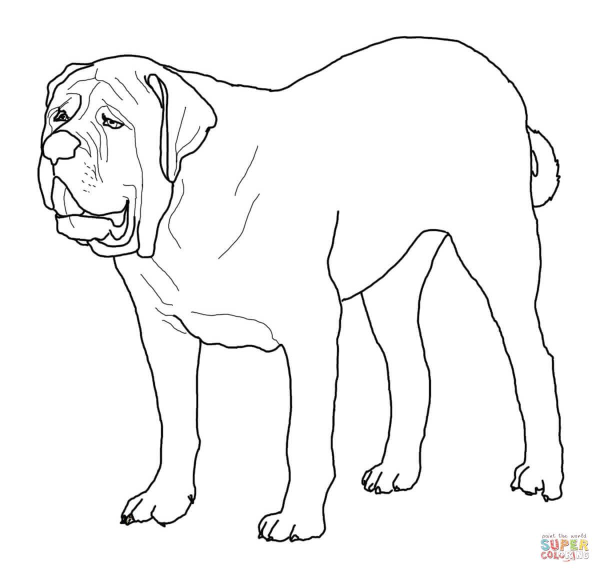 English Mastiff Coloring Page