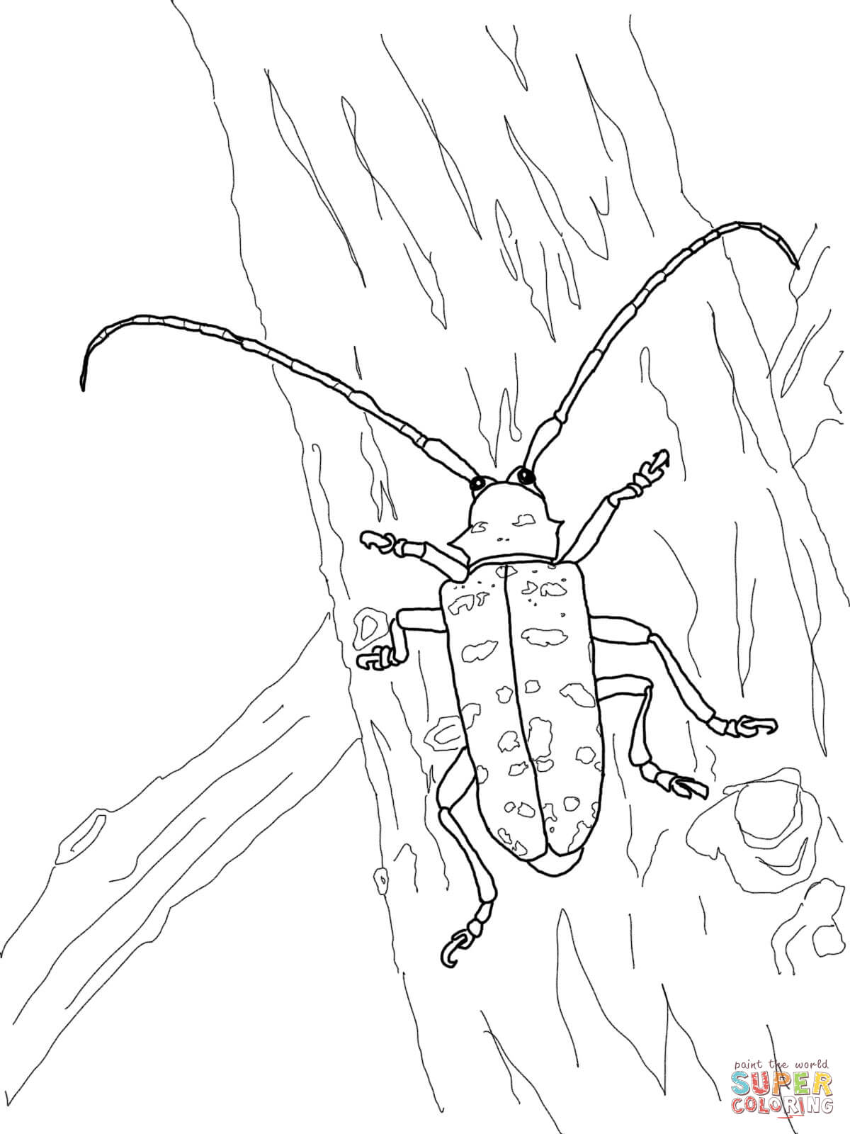 Asian Longhorned Beetle Coloring Page
