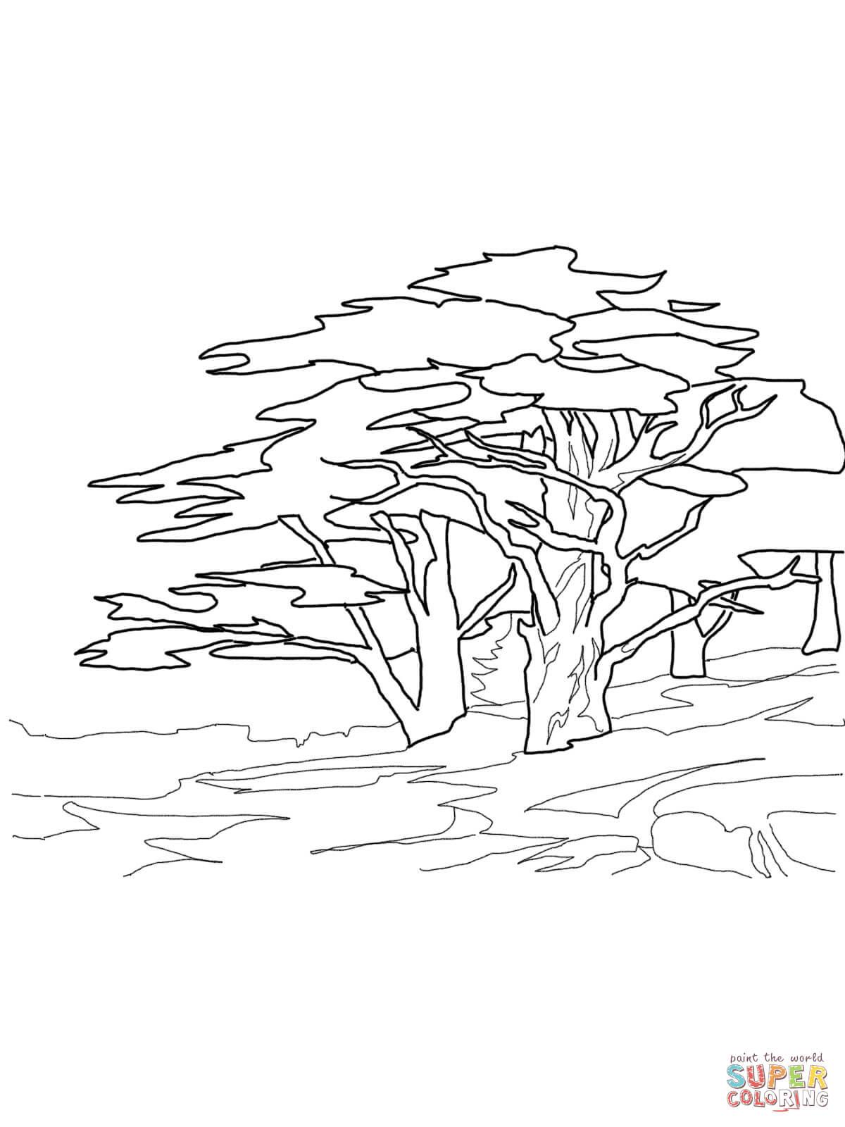 Red Cedar Cat Trees