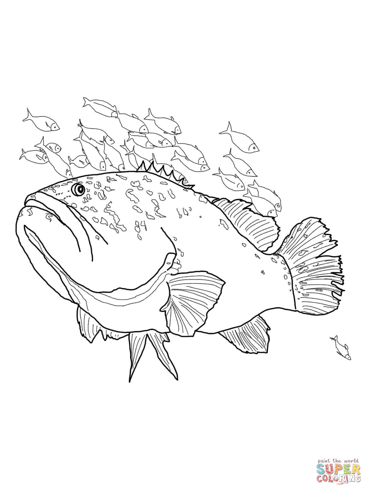 Giant Grouper Coloring Page