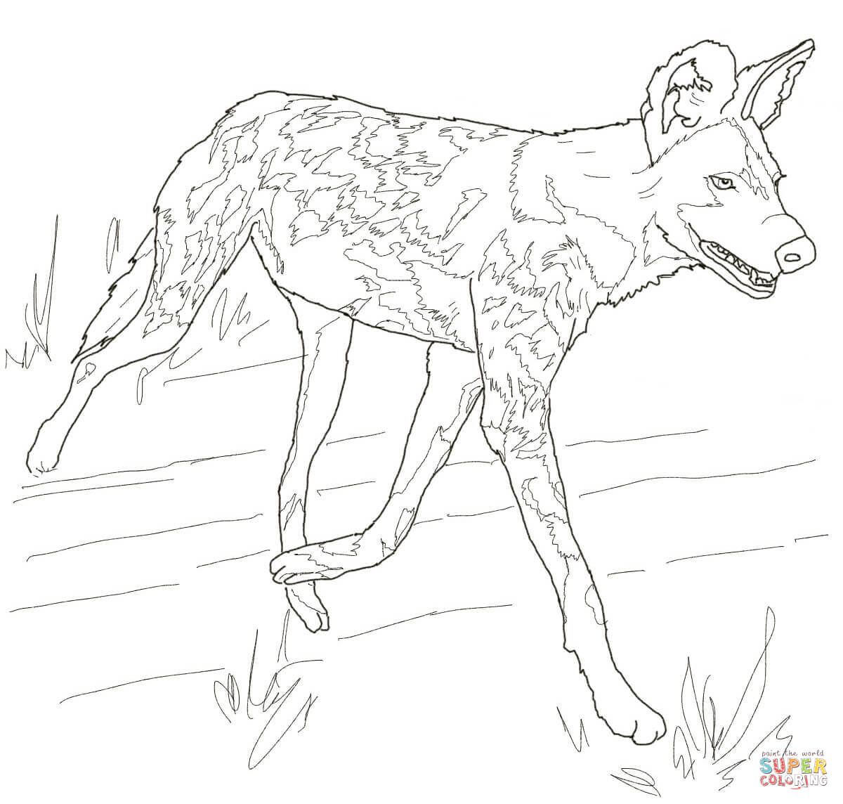 African Wild Dog Or Painted Hunting Dog Coloring Page