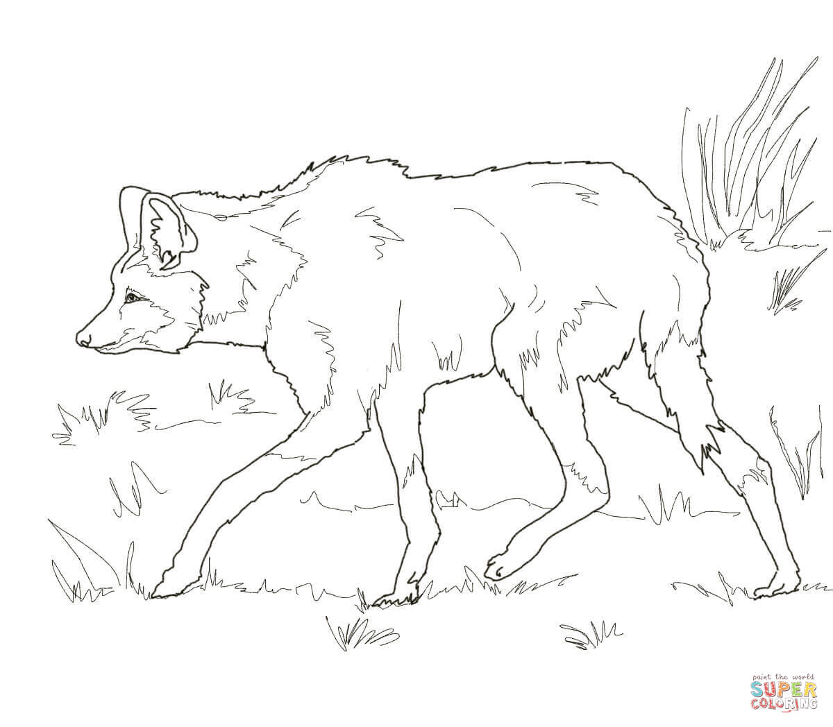 South American Maned Wolf Coloring Page