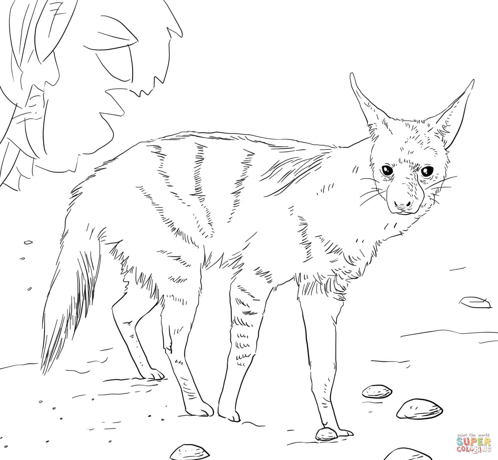 African Aardwolf Coloring Page