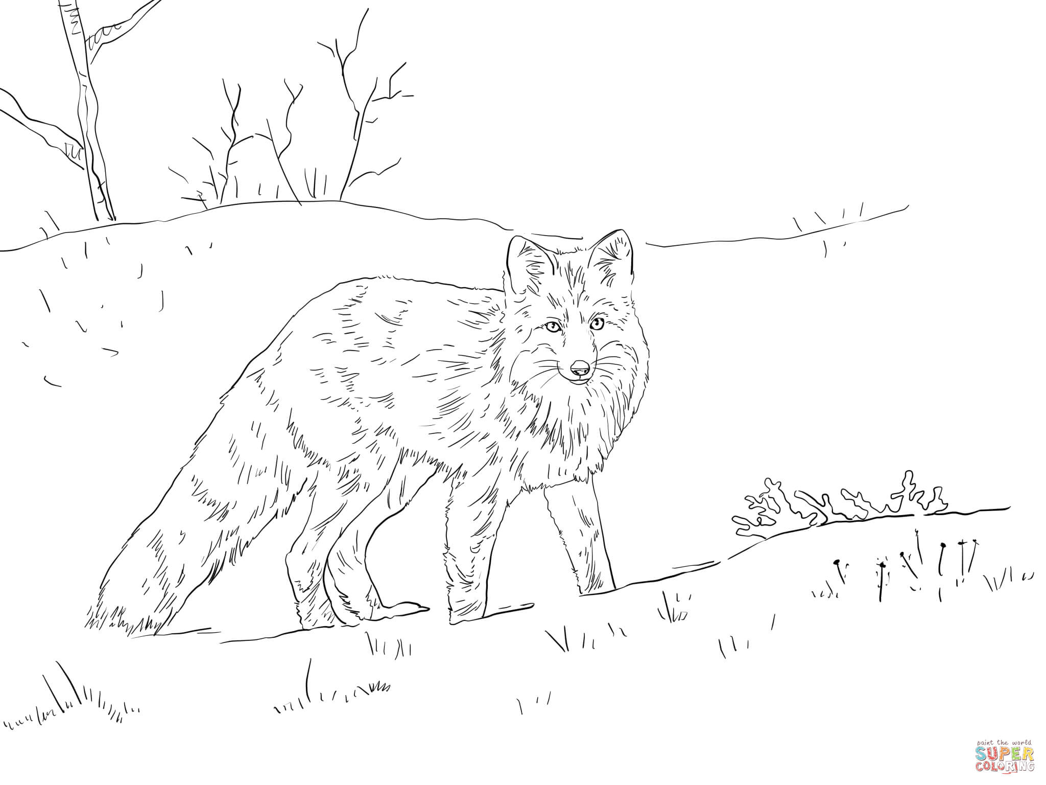 Red Fox In Snow Coloring Page