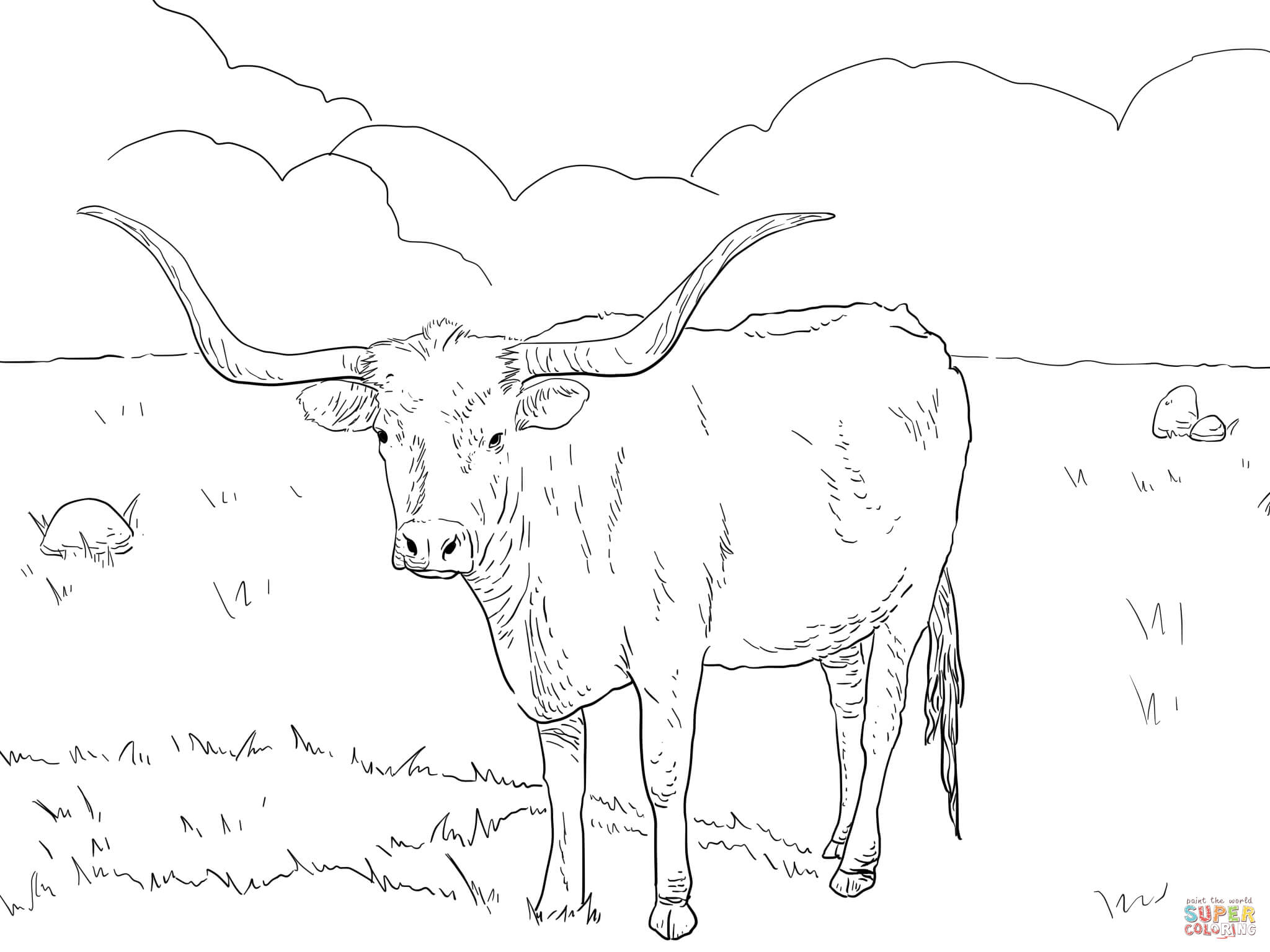 Ausmalbild Texanische Longhorn Kuh