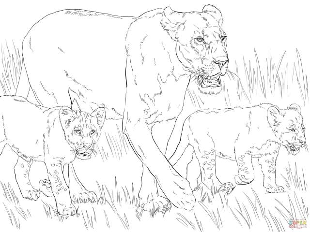 Lioness with Cubs coloring page  Free Printable Coloring Pages