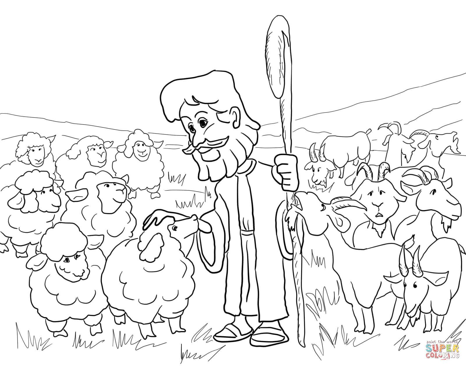 Sheep Drawing 2 Worksheet