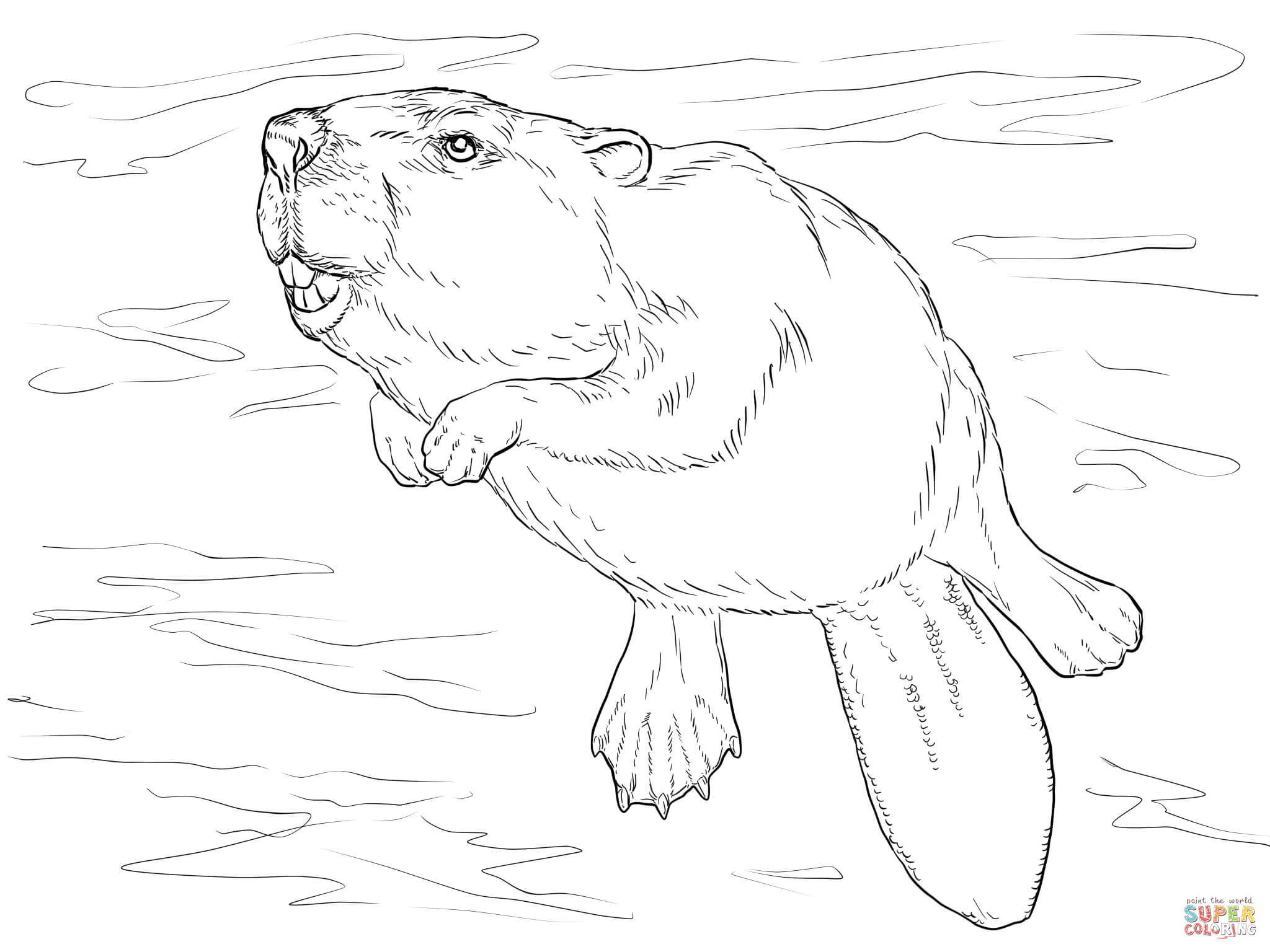 Swimming Beaver Coloring Page