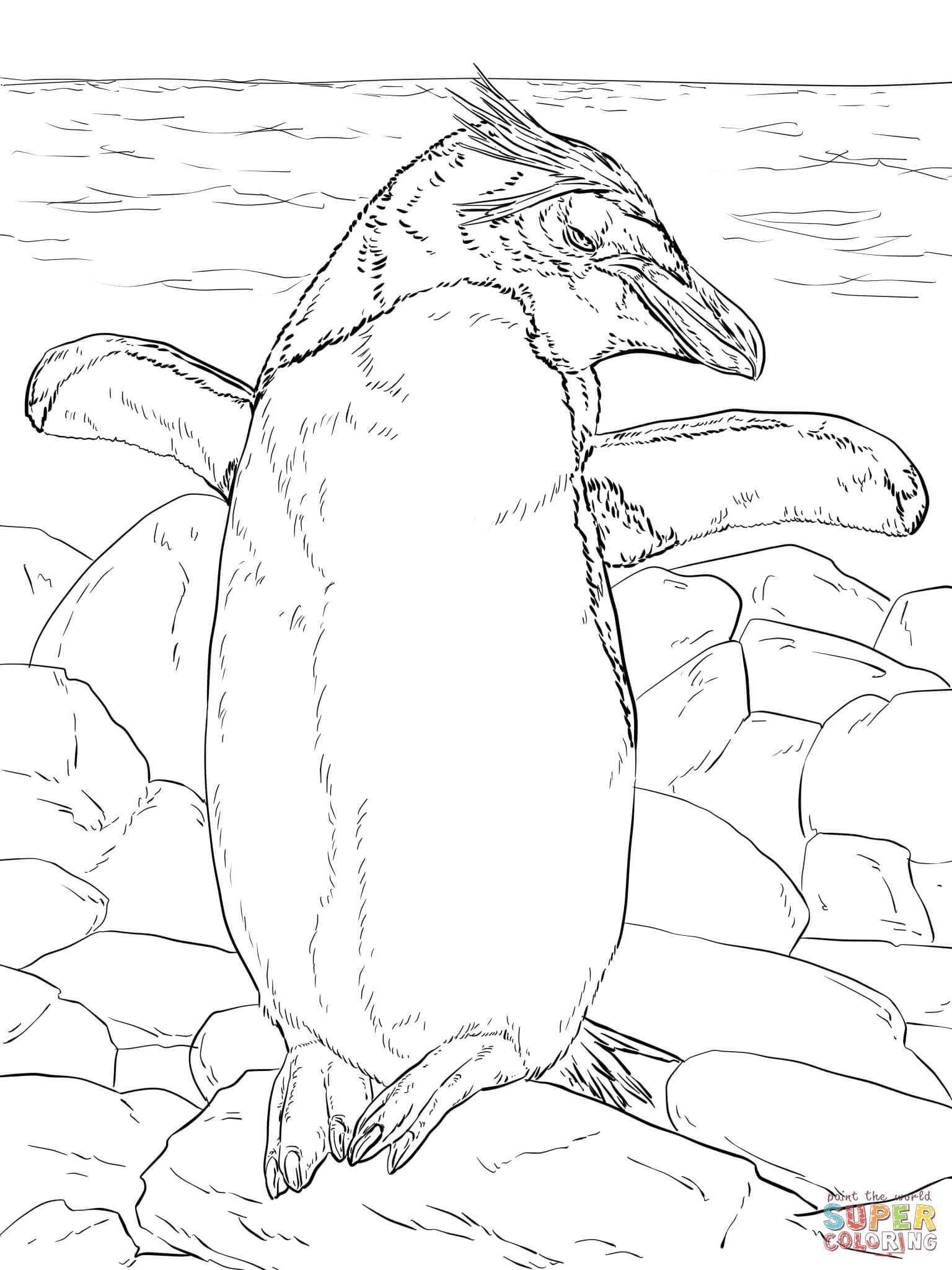 Macaroni Penguin Basking In The Sun Coloring Page