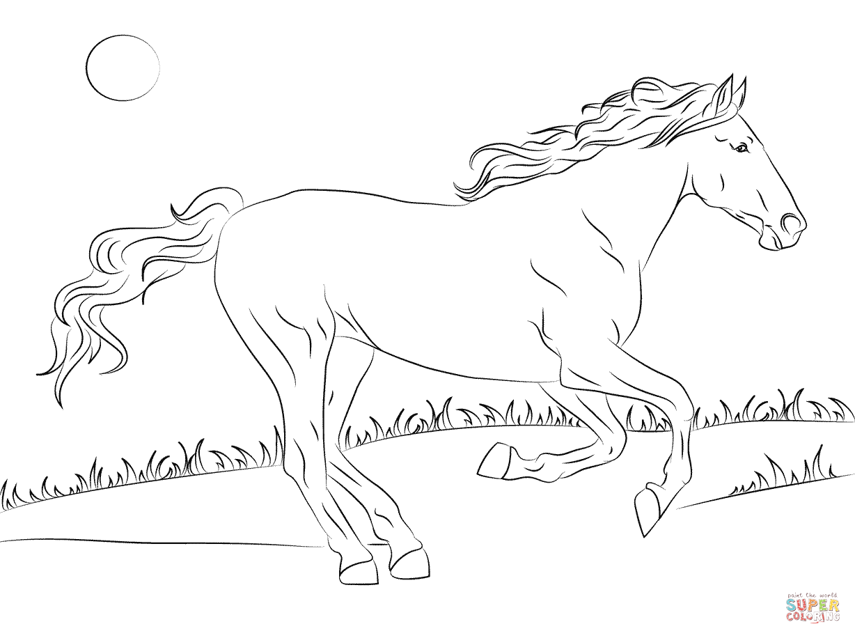 Beautiful Mustang Horse Coloring Page
