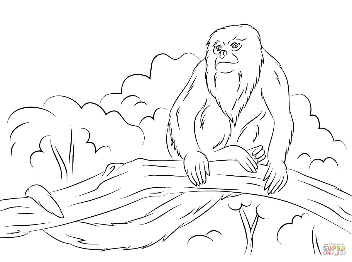 Desenho De Bugio Sentado Em Uma Arvore Para Colorir
