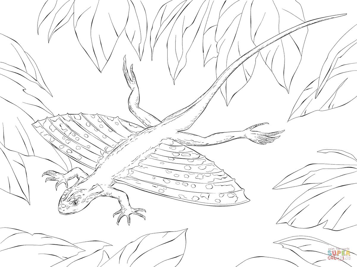 Ausmalbild Xianglong Flugdrachen