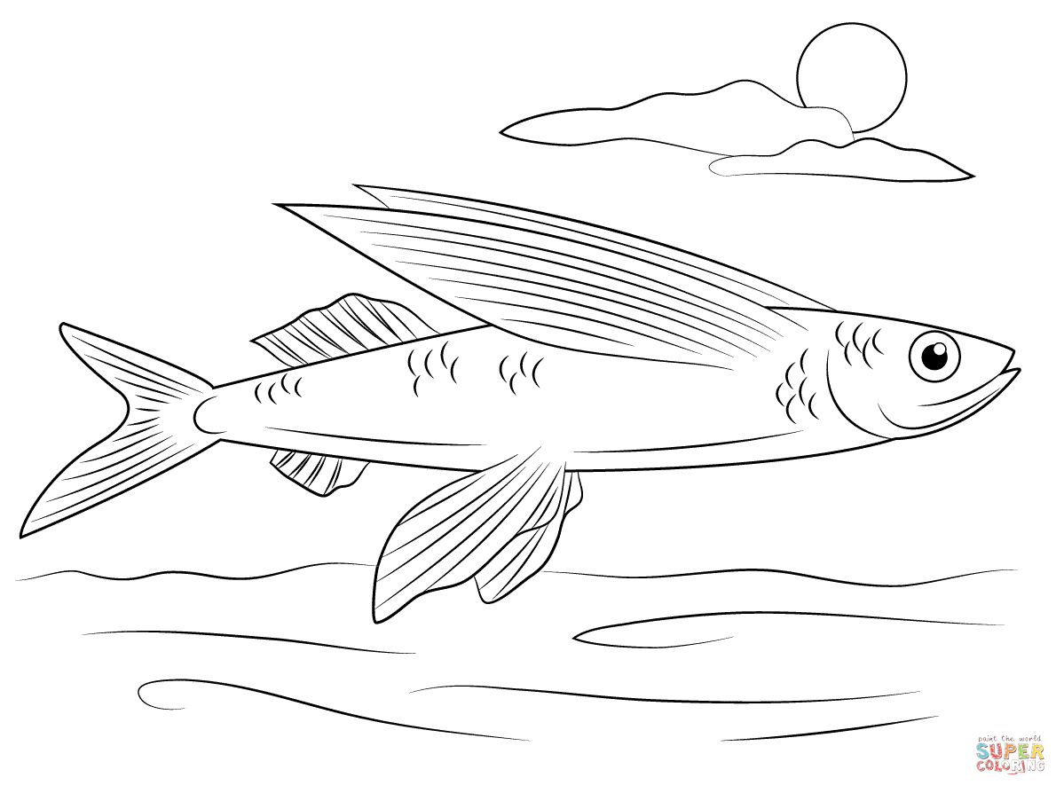 Flying Fish Coloring Page