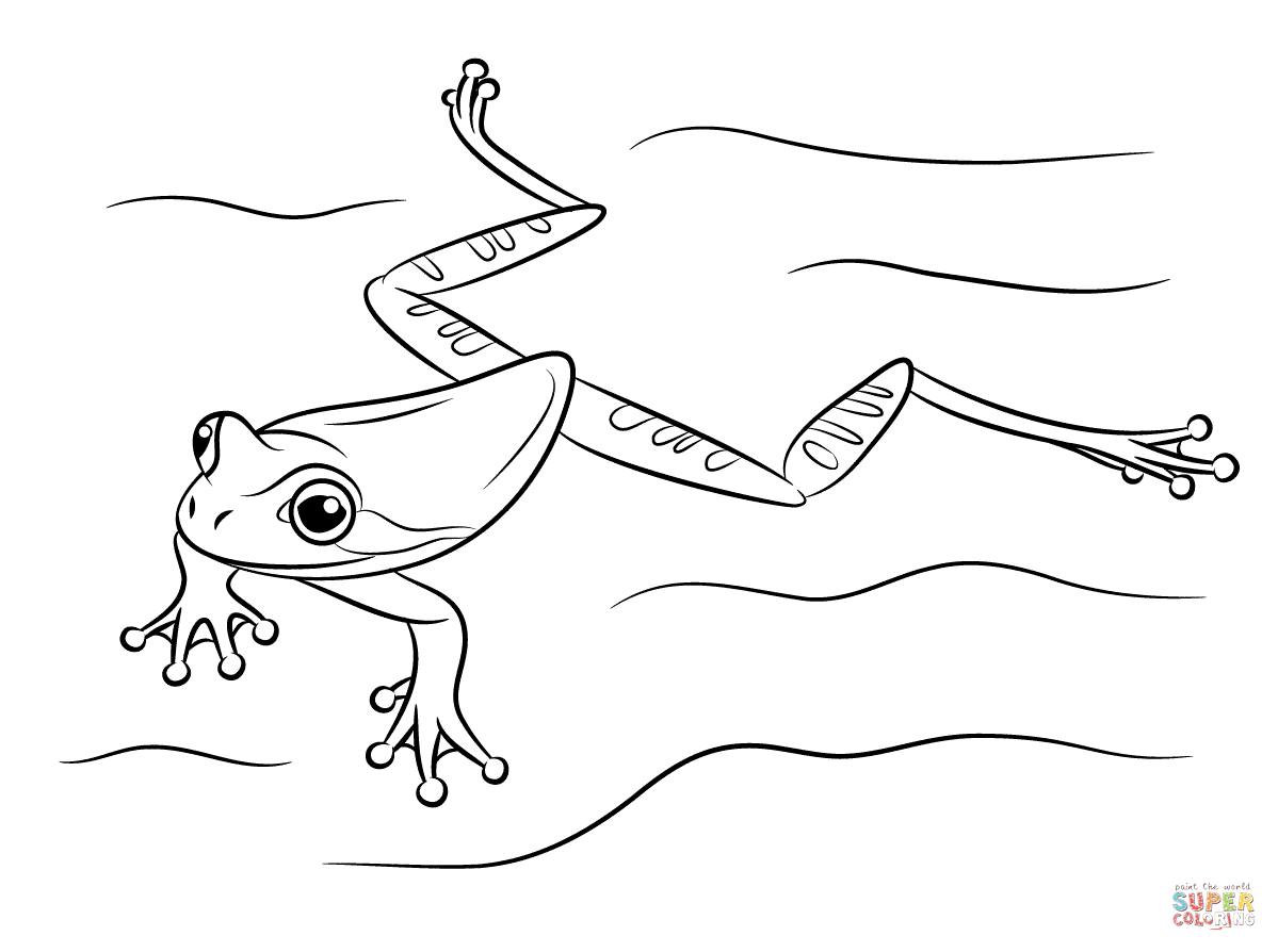 Masked Tree Frog Swimming Coloring Page