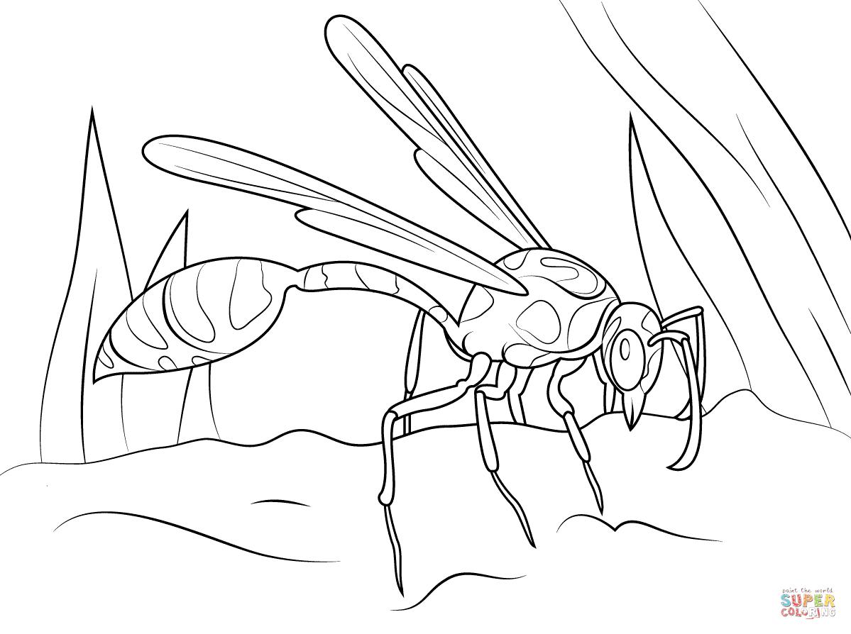 Mud Dauber Wasp Coloring Page