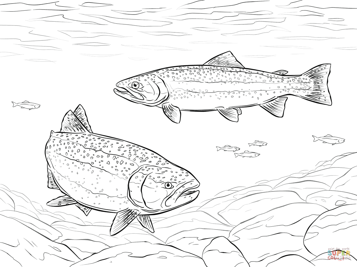 Rainbow Trouts Coloring Page