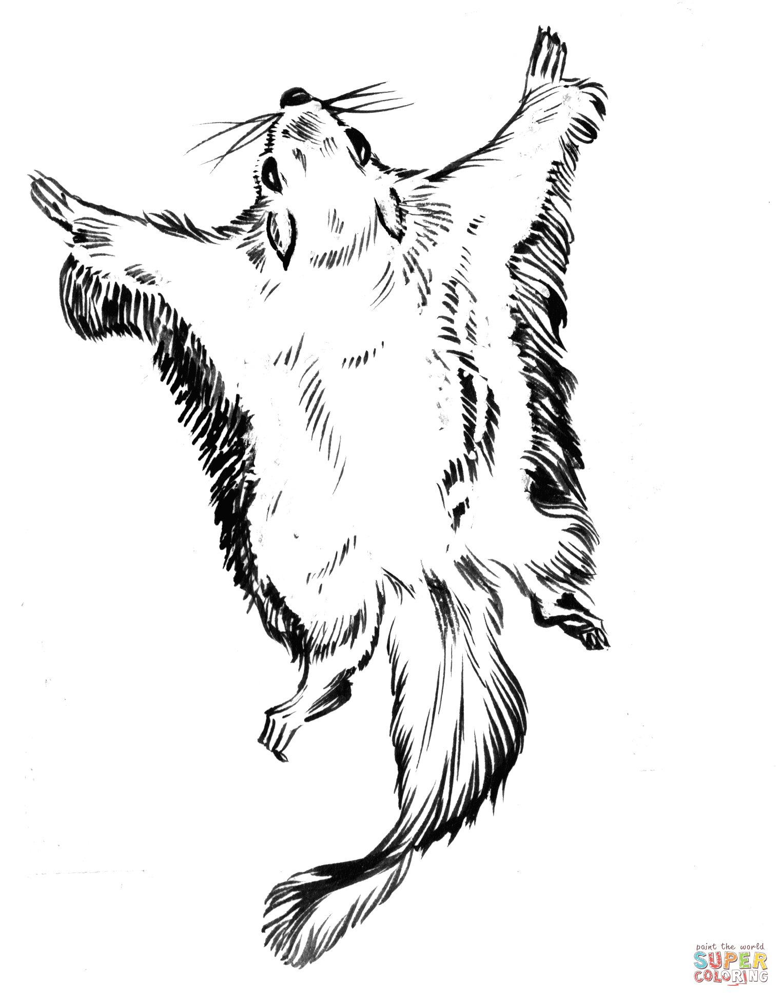 Flying Squirrel Coloring Page Free Coloring Pages Download | Xsibe ...