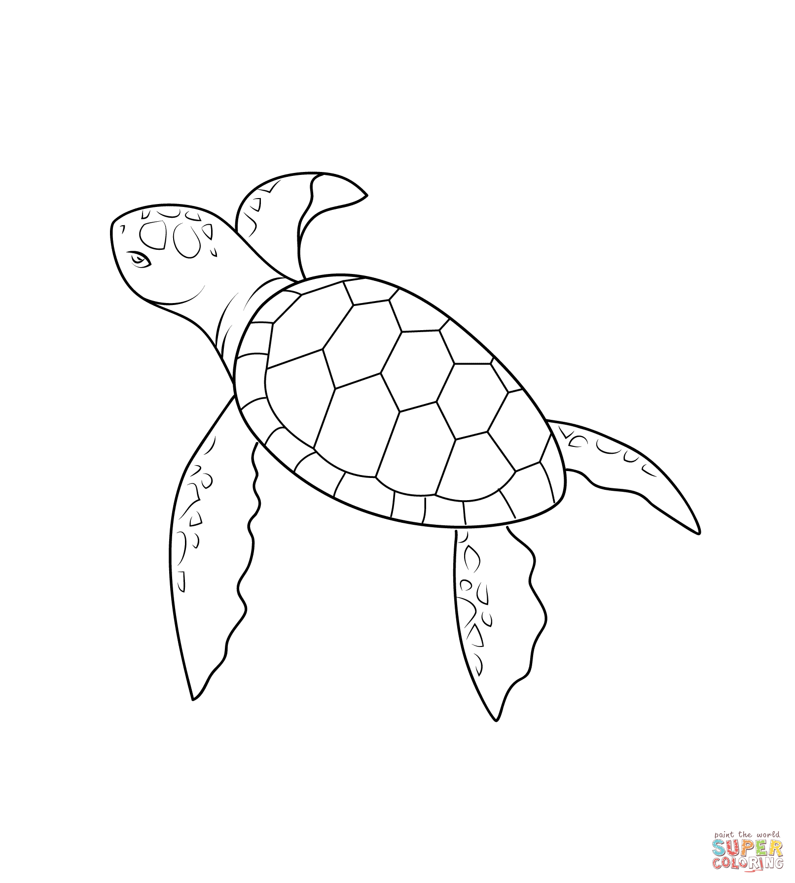 Baby Turtle Coloring Page