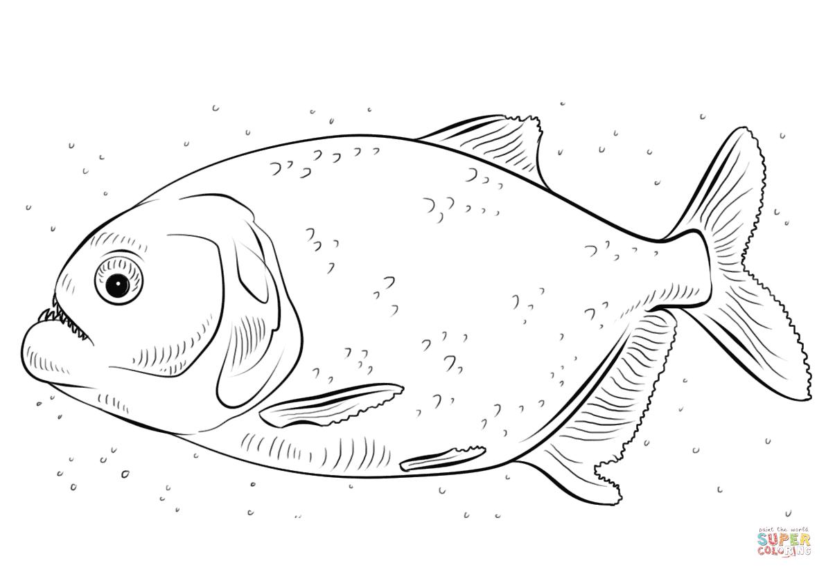Ausmalbild Piranhas